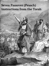 Seven Passover (Pesach) Instructions from the Torah Pic A