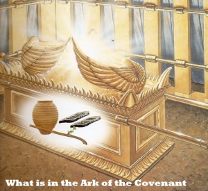 What is in the Ark of the Covenant Pic A