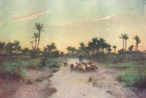 egypt-land-of-goshen-evening-antique-print-1912-43519-p