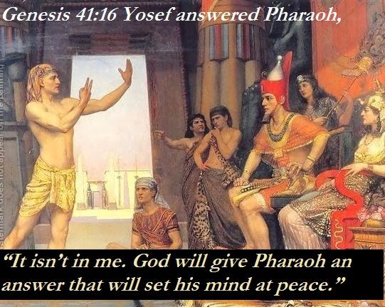Image result for Genesis 41:1 - 44:17